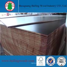 15mm / 18mm Phenolic Black Film Faced Plywood de Shandong