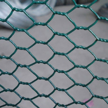 Quality Plant Protection Hexagonal Wire Neting