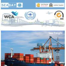 Transporte marítimo profesional de China a Gotemburgo, Suecia