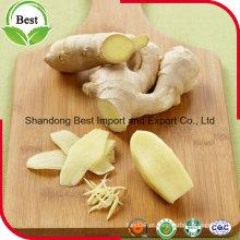 2016 Crop Air Dried Ginger preço barato