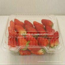 Caja plástica respetuosa del medio ambiente de los PP de la salud para la fruta (empaquetado de los alimentos)
