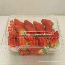 ЭКО-здоровье прозрачная пластиковая ПП коробка для фруктов (пищевая упаковка)