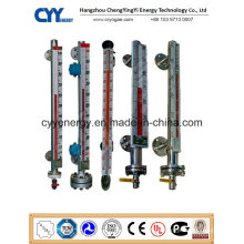 High Quality Cyybm63 Magnetic Level Meter for Cryogenic Tanks Using