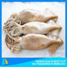 Bonne qualité des nouveaux calamars congelés