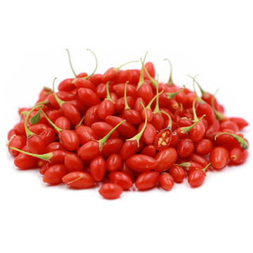 Bio goji berries with zero pesticide/low sugar Chinese wolfberry in Ningxia