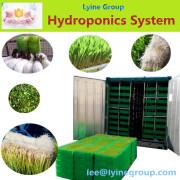 Automatic cow farm Hydroponically equipment