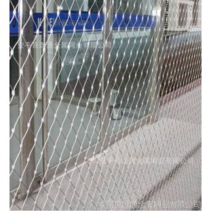SS Wire rope mesh/stainless steel cable netting