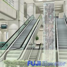 Escalator exceptionnel et automatique