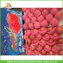 2014, colheita, fresco, vermelho, fuji, maçã