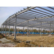 Professional Steel Structure Workshop and Steel Structure Warehouse