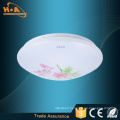 Electrode-Less Microwave Remote Control 24W LED Ceiling-Mounted Light