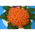 Bulk Wholesale Frozen Carrot Dice