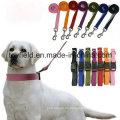 Hundehalsband Leine Harness Katze Produkt Versorgung Haustier Kragen