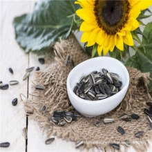 2017 crop organic sunflower seeds in store