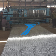 Malla de alambre galvanizada hexagonal de la agricultura del pollo