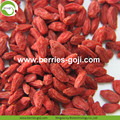 Pierde peso Secado Natural Tibet saludable Goji