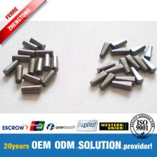 High Quality Tungsten Carbide Tire Studs