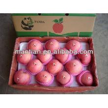 Yantai Fresh Red Fuji Apple-2013 new crop