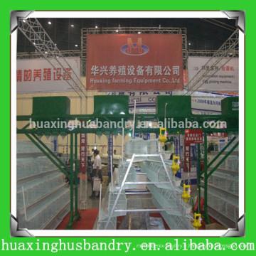 Équipement d'élevage de volailles populaire et de bonne qualité en Chine