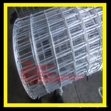 YW-- 1/4 inch Hot Dipped Galvanized Welded Wire Mesh Manufacturer /Skype: randy.liang1