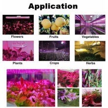 Veg / Bloom LED Grow Light con uscita PAR alta