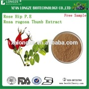 Rose Hip Extract powder with 1-20% Rose hip Flavone Rosa rugosa Thunb. Exract Powder