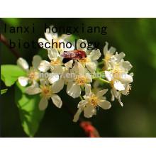 Натуральный липный мед