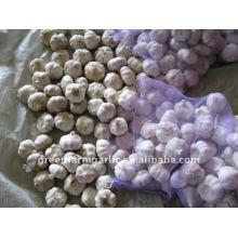2015 Fresh size 5.0cm Normal White Garlic