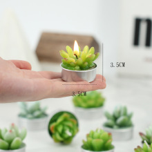 Decorazione Simulazione Green Desert Succulent Candles