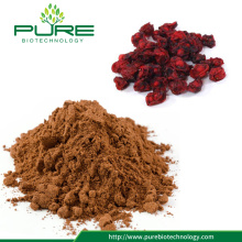 Naturlig Herbal Extract Schisandra Powder