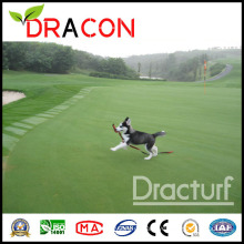 Landscape Artificial Turf Grass for Playgroud (L-1206)