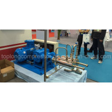 Mittlerer Druck Kryogene Flüssigkeitspumpe (Svmb300-600 / 50)