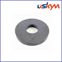 Factory Y25 Ring Ferrite Magnets (R-008)