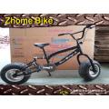 Bicycles/Kid′s Fat Bike/Children Fat Bike/Fat Beach Bike