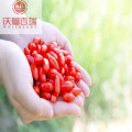 Wolfberry/ Lycium Barbarum/ New Harvest goji berry