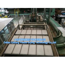High Capacity Paraffin Production Line
