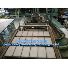 Ligne de production de paraffine à haute capacité