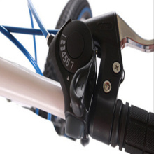 Popular 20 inch steel bikes for chilren