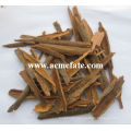 cassia broken from China