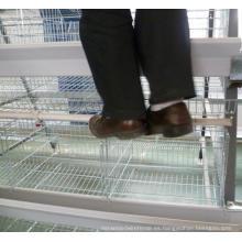 Kenia y Nigeria Venta caliente jaula de pollo de alta calidad / jaula de la batería