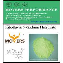 Vente chaude Vitamine Riboflavine 5'-Sodium Phosphate
