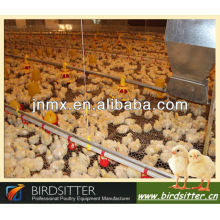 Automatic Poultry Control Farm for Broilers and Chickens