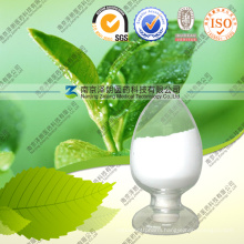 Natural L-Theanine Green Tea Extract for Beverage