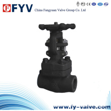 Forged Steel Butt-Weld Gate Valve