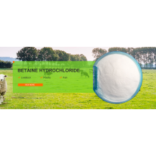 Cystadane CAS 107-43-7 98% Betaine Efficiency Efficiency