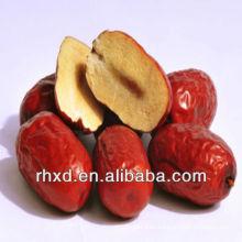 Date/dates/jujube/china dates