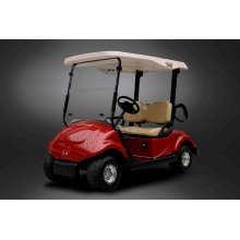 Dongfeng Club Car Golf Cart