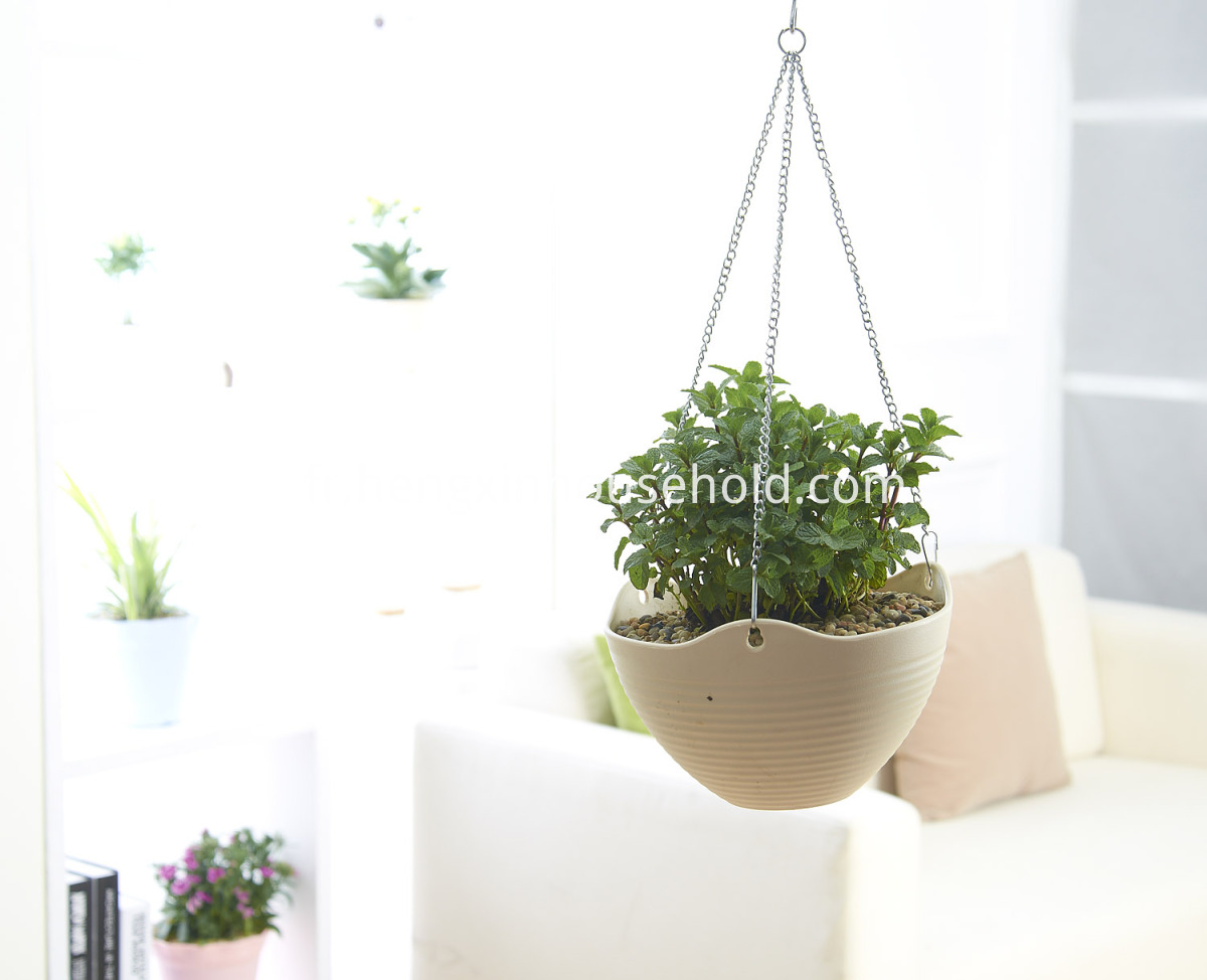 eco pots for plants