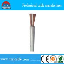 2cx10-20AWG Spt-3 Farbiger PVC Kupfer / CCA Leiter mit UL & RoHS Standard