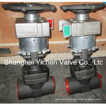 Mechanical Interlock Manual Gate Valve